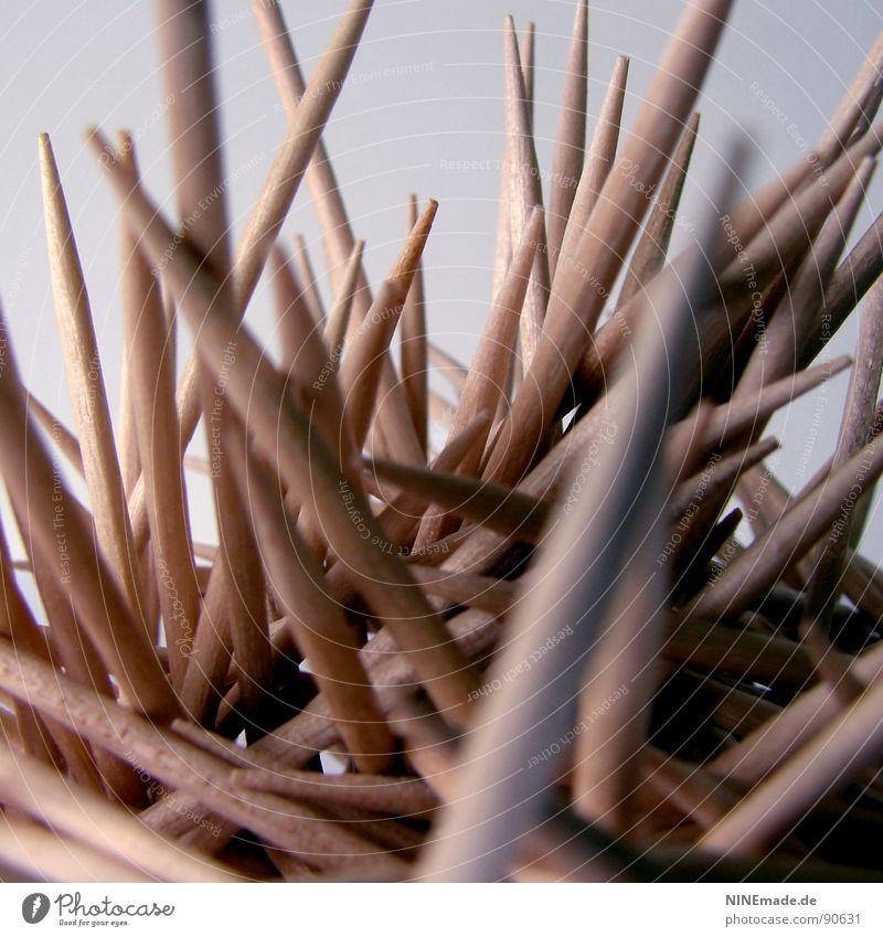 stachelig & SPITZ Zahnstocher aufgespiesst Holz Holzfarbe beige gelb Reinigen Zahnpflege durcheinander vertikal lustig Essstäbchen Mikado Defensive Küche Angst