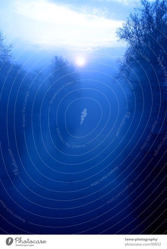 Mystic River ruhig Sonne Meer Wellen Natur Landschaft Horizont Mond Nebel Baum Wald Küste See Fluss träumen Unendlichkeit blau Angst Surrealismus Märchen