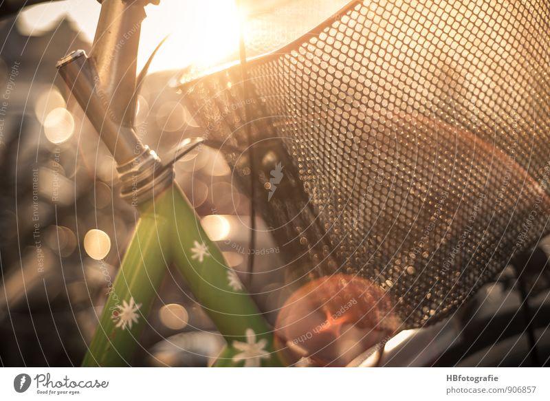 Sommer-feeling grün Sonne Freude Kunst träumen Freizeit & Hobby Fahrrad Lebensfreude Fahrradfahren Warmherzigkeit Fahrradtour Sehnsucht Fernweh Sommerurlaub