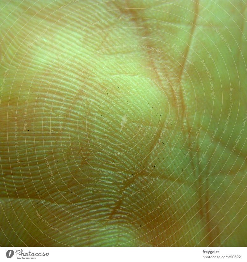 Alles wieder heil :) Gesundheit normal Fingerabdruck Fußspur Hand Organ rosa nah Freude Haut Leben Blattadern healthy skin Strukturen & Formen structure