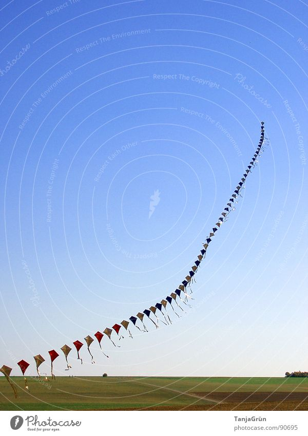 Drachenkette Lenkdrachen Kette Wind Sommer mehrfarbig Freude fliegen Himmel blau grün schimmern Farbe Feld Wiese Drachenfest laufen Spielen steigen Trick Herbst