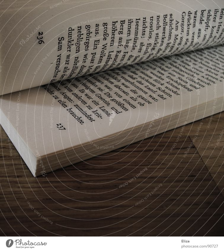 Auf Seite 236 alt Freude ruhig Erholung Gefühle Arbeit & Erwerbstätigkeit Deutschland Freizeit & Hobby Buch Schriftzeichen Elektrizität Bodenbelag lesen