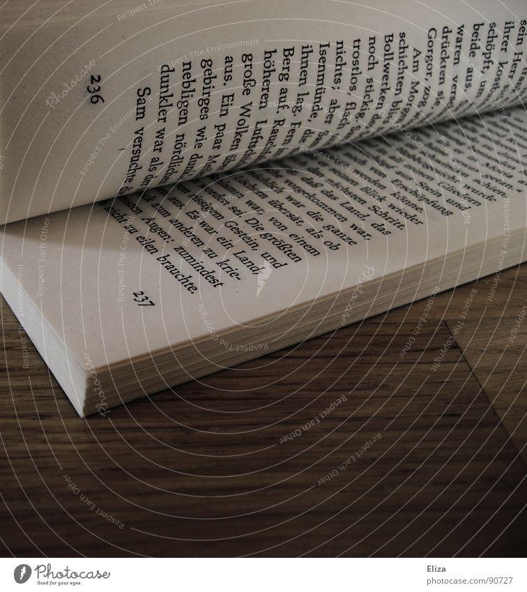 Auf Seite 236 Buch lesen Bildung Roman Erzählung aufgeschlagen Parkett Lesezeichen Zeitvertreib Freizeit & Hobby Romanfigur flüchten ruhig Erholung aufregend