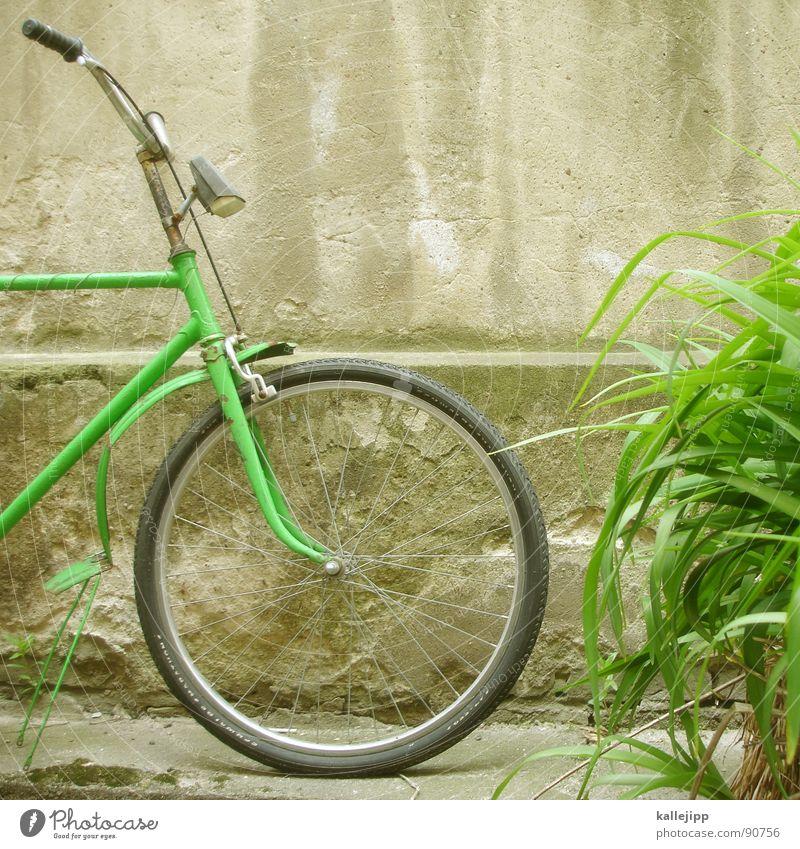 abstellplatz II Fahrrad Oldtimer Rad Gummi Ständer Mauer Rücklicht Hinterhof Kotflügel Felge Speichen Chrom grün Gras Schlauch Mantel Lampe verfallen prifiel