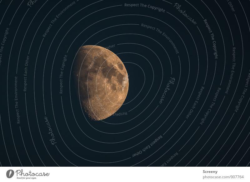 Zum anfassen... Himmel Natur Ferne Umwelt Idylle leuchten groß ästhetisch rund einzigartig Wolkenloser Himmel Mond Vulkankrater