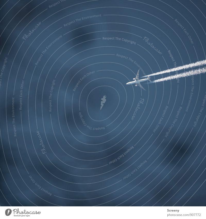 Eifach fott.... Umwelt Himmel Wolkenloser Himmel Sträucher Verkehrsmittel Luftverkehr Flugzeug Passagierflugzeug Kondensstreifen fliegen hoch Geschwindigkeit