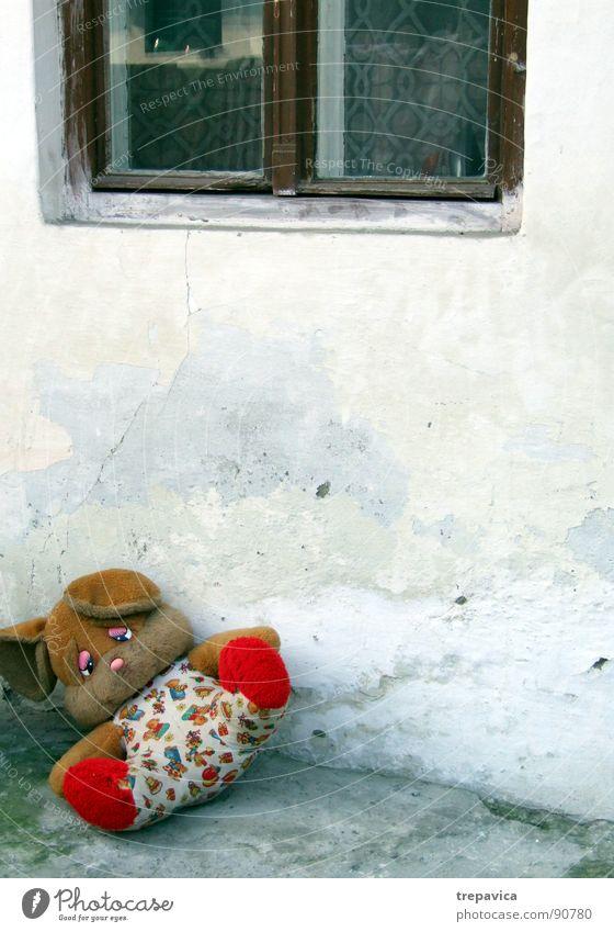 baerchen I Fell klein vergessen aufwachen süß Spielzeug Beton rustikal Zeit Trauer retro Haus verloren Spielen Einsamkeit Wand Dinge 1 Puppe Bär forgotten