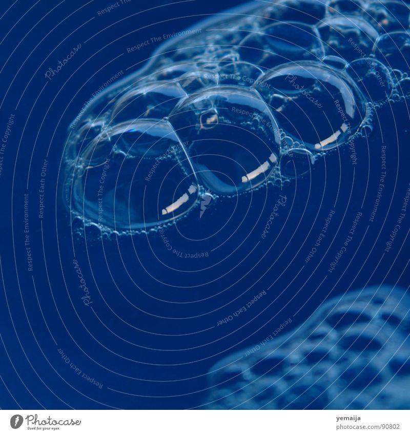 Ein Feldbusch II Wasser blau rund Flüssigkeit Blase Seifenblase Schaum Blubbern