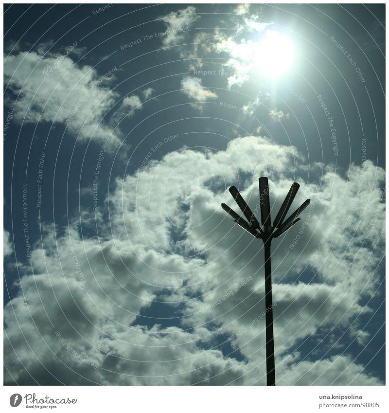 fleur Sonne Himmel Wolken Blüte Verkehrswege blau weiß Laterne Straßenbeleuchtung Beleuchtung Licht
