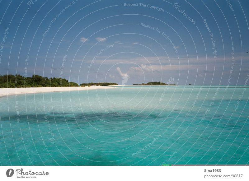 Ein Traum.... Wasser Meer Sommer Ferien & Urlaub & Reisen Wolken Einsamkeit kalt Erholung Wärme Sand Insel Physik türkis Palme Malediven Blauer Himmel