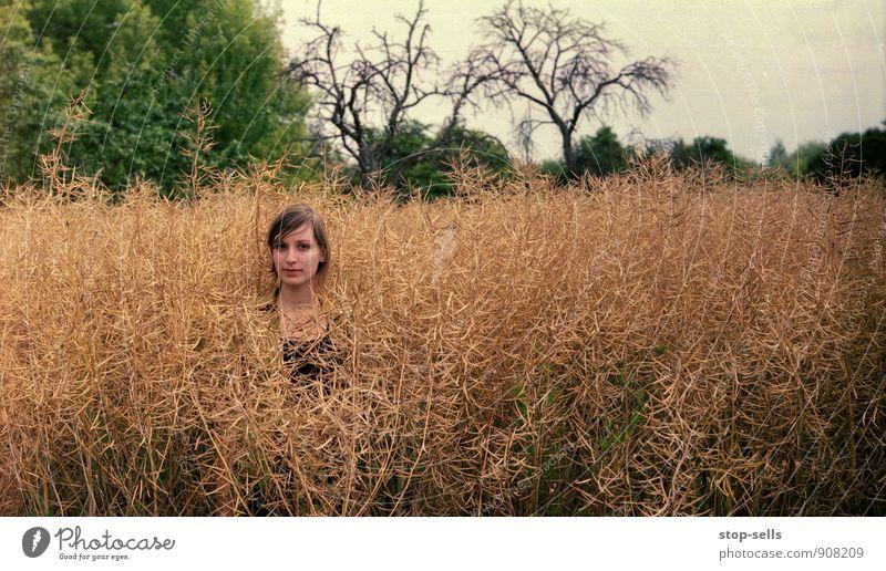 Giraffe Mensch Frau Natur Pflanze Sommer ruhig Mädchen Gesicht feminin Kopf Feld Lifestyle einzeln beobachten Niveau Gemälde