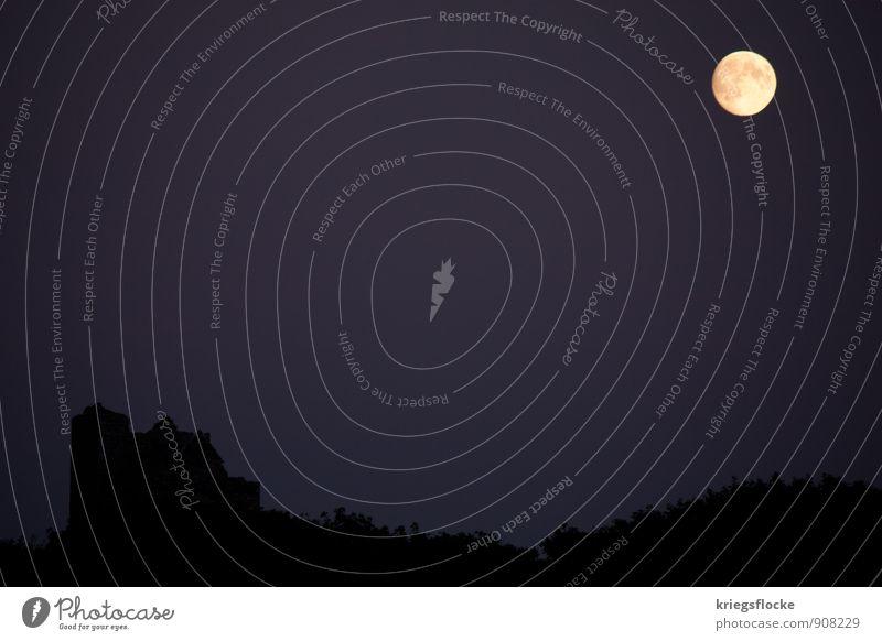 Halloween - Spaß im Dunkeln Landschaft Mond Vollmond Stimmung Romantik Angst Ruine dunkel mystisch Märchen ruhig Silhouette Farbfoto Außenaufnahme