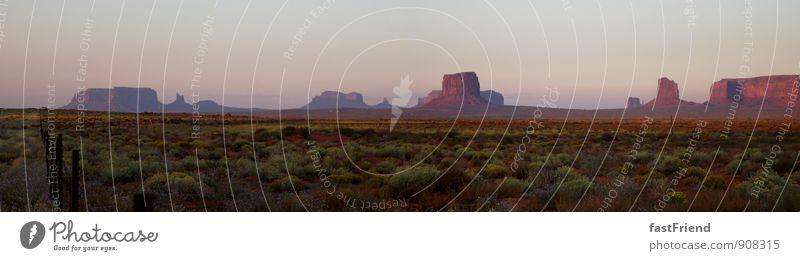 Der schöne Westen Natur Pflanze Sommer rot Blume Landschaft Berge u. Gebirge Wiese Erde ästhetisch Schönes Wetter Wüste heiß Stars and Stripes Grünpflanze