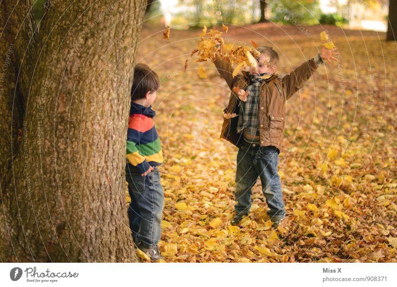 Der König Mensch Kind Baum Blatt Freude Wald Herbst Gefühle Junge Spielen Stimmung Freundschaft Park Freizeit & Hobby Kindheit Fröhlichkeit