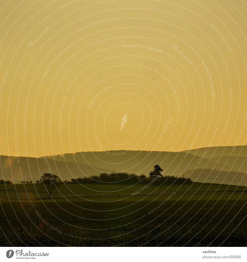 Landschaft Himmel Freude Ferien & Urlaub & Reisen Wolken Wiese Gefühle Gras Nebel Wetter Seil Hoffnung Weide Zaun Dunst Schleier diffus