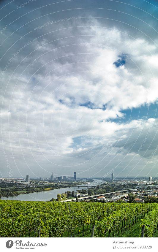 Wien an der Donau Umwelt Natur Landschaft Pflanze Himmel Wolken Horizont Herbst Wetter Baum Sträucher Hügel Fluss Österreich Stadt Hauptstadt Stadtrand Haus