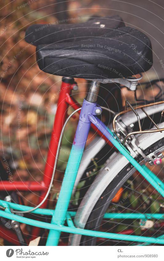 fahrräder sportlich Freizeit & Hobby Herbst Verkehr Verkehrsmittel Fahrradfahren Fahrradtour Fahrradsattel alt dreckig rot türkis Pause Farbfoto Außenaufnahme