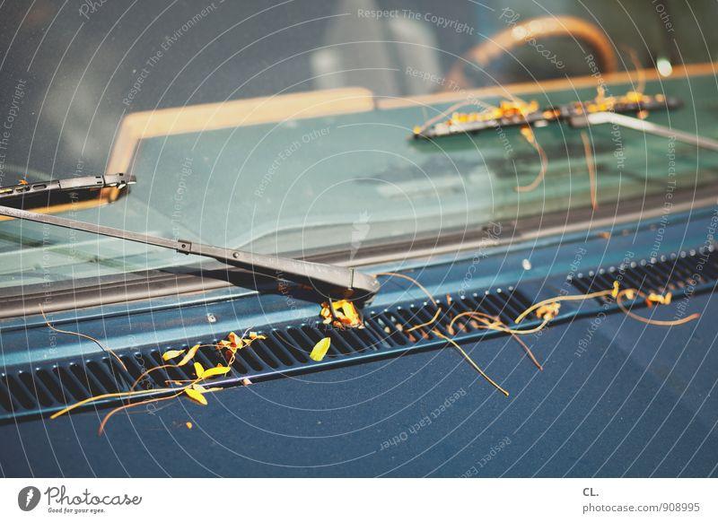 herbstauto Natur Herbst Blatt Verkehr Verkehrsmittel Autofahren Fahrzeug PKW Lenkrad Scheibenwischer Autofenster blau braun Farbfoto Außenaufnahme Menschenleer