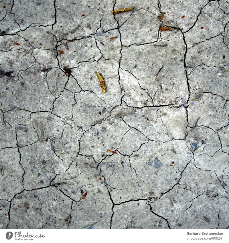 Bodenlos Tod grau Erde Trauer trist Bodenbelag dünn Vergänglichkeit trocken Verzweiflung gebrochen Riss brechen Insolvenz Steppe Durst