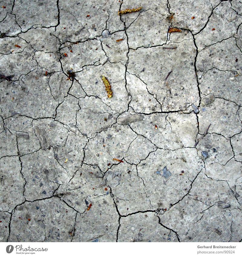 Bodenlos trocken grau brechen gebrochen gerissen trist Vergänglichkeit Insolvenz Steppe verdursten unruhig Trauer Verzweiflung Bodenbelag Riss dünn Erde karg