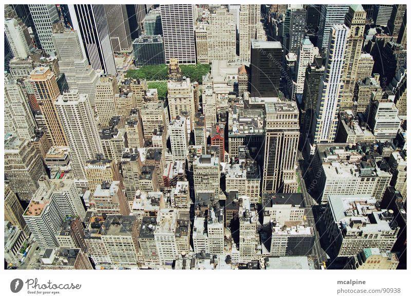 Manhattan New York City Gebäude Beton Park 5th Avenue Hochhaus Stadt eng tief grün grau Fenster Amerika Aussicht Wohnung Dach Architektur Manhatten USA
