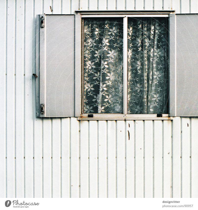 blumig Bauwagen Fenster grau Fensterladen Gardine Blume Blech trist Rust Detailaufnahme Rost contractor's shed window grey shutter curtain flowers plate