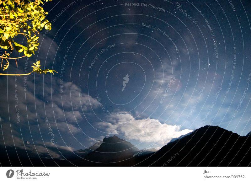 Nachthimmel 30 sec. Erholung ruhig Tourismus Ferne Sommer Berge u. Gebirge Natur Landschaft Himmel Stern Herbst Schönes Wetter Ast Blatt Alpen Kiental