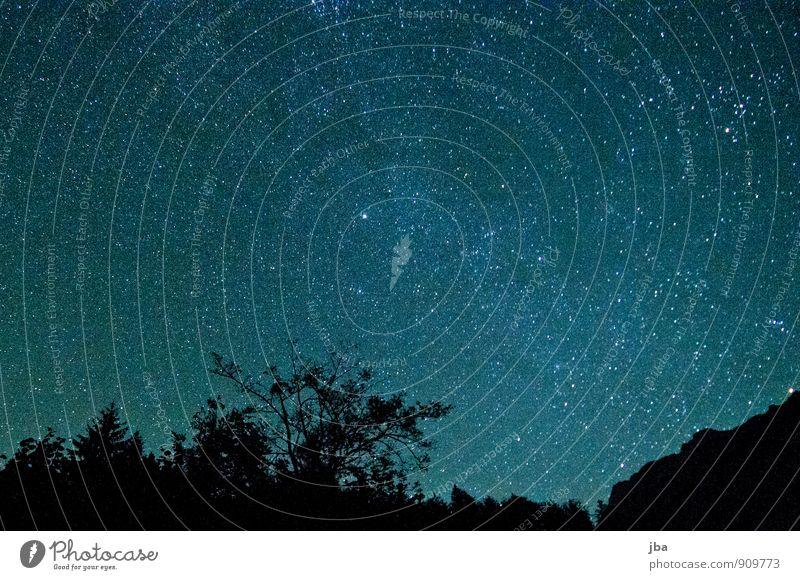 Nacht im Kiental Himmel Natur Sommer ruhig dunkel Wald Berge u. Gebirge Herbst Freiheit leuchten Schönes Wetter Stern Baumkrone harmonisch Nachthimmel