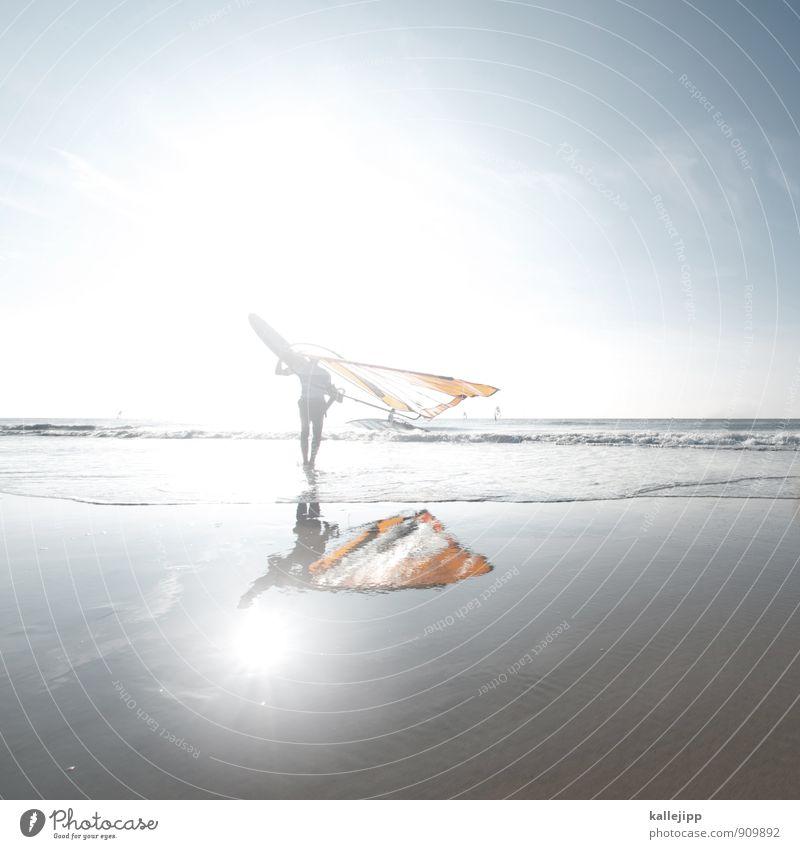 neptun Sport Fitness Sport-Training Segeln Mensch maskulin Mann Erwachsene 1 Umwelt Natur Wasser Wellen Küste Strand tragen Surfen Windsurfing Wattenmeer