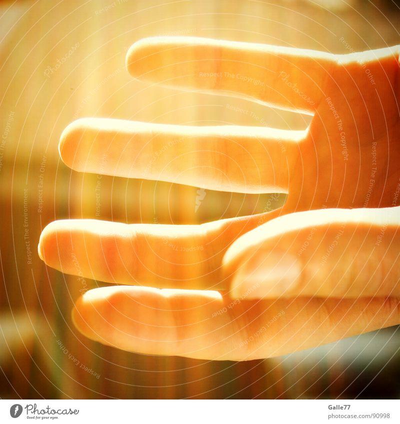 Shine Hand Finger aufmachen Götter Erkenntnis glänzend Sommer Physik offen beobachten Lampe Beleuchtung segen Gott Macht Energiewirtschaft Sonne Wärme