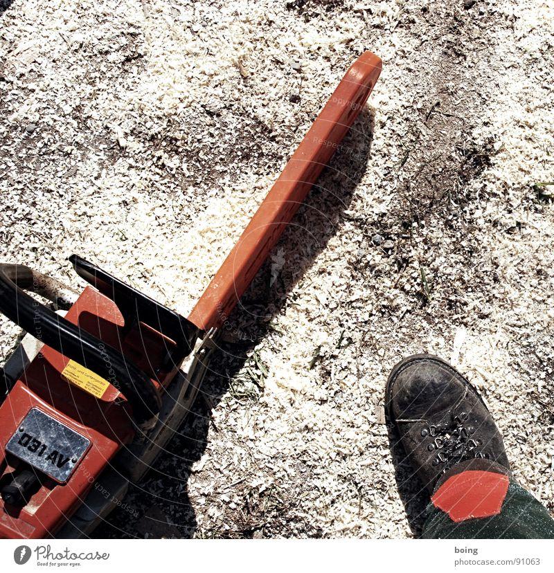 Holz ist ein Stück Lebensqualität Holz Brand gefährlich Feuer Sicherheit bedrohlich Handwerk Stiefel Baum fällen Arbeiter Waldboden Brennholz Holzstapel Arbeitsbekleidung Säge fällen