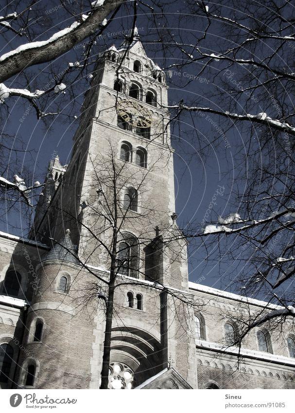 Phallus Symbol mit Schnee alt blau weiß Baum Winter ruhig kalt grau Wärme Religion & Glaube Mauer hell Kunst Zeit Eis