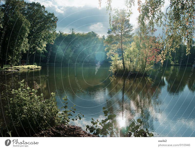 Inseldasein Himmel Natur Pflanze Wasser Baum Landschaft Blatt Wolken ruhig Ferne Wald Umwelt natürlich glänzend leuchten Idylle