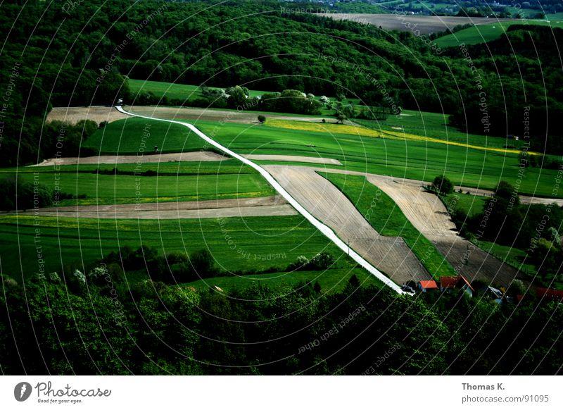 Im Traum kann ich fliegen. Ferne Straße Wald Landschaft fliegen Perspektive Aussicht Hügel Amerika