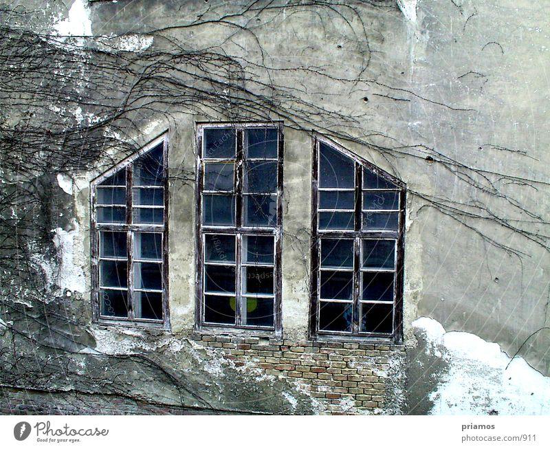 Fester die 2. Fenster Verfall Strukturen & Formen Backstein Wand Mauer Architektur Fasade alt