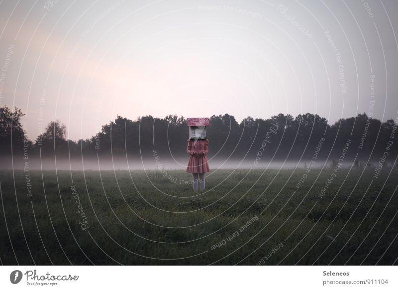 madhouse Mensch feminin Frau Erwachsene 1 Umwelt Natur Landschaft Himmel Nebel Garten Park Wiese Kleid stehen kalt verrückt Gefühle bizarr Kreativität skurril