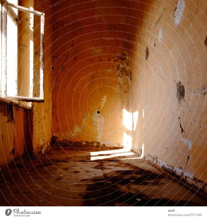 ...oder bei OBI alt Haus Fenster Wand Innenarchitektur Architektur Mauer Wohnung Raum orange Häusliches Leben kaputt Vergänglichkeit Verfall Wohnzimmer Ruine