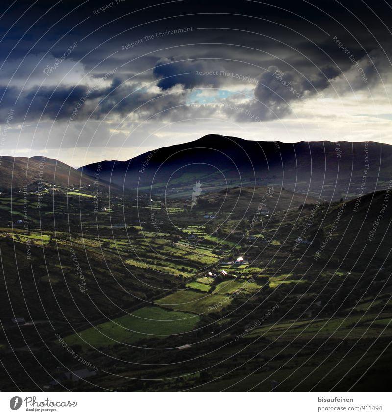 Irland Natur Landschaft Sommer Wetter Wiese Feld Wald blau grün Idylle Klima Ferien & Urlaub & Reisen Republik Irland Mittelgebirge Berge u. Gebirge