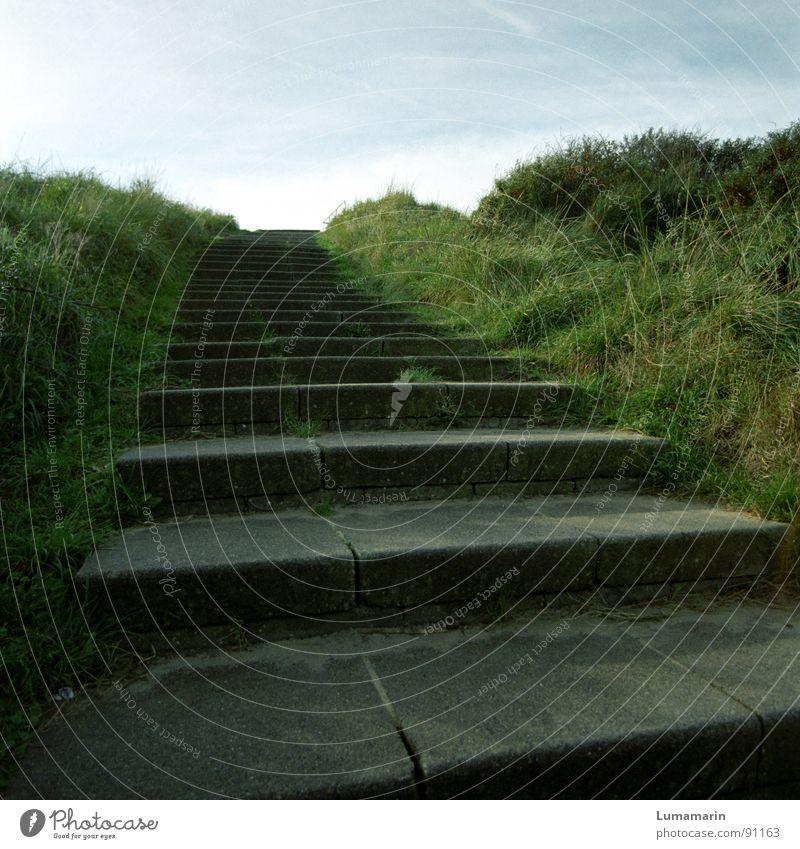Immer weiter Himmel blau grün Berge u. Gebirge Gras Wege & Pfade grau Stein Garten Horizont Park Treppe laufen Erfolg Wandel & Veränderung Hoffnung