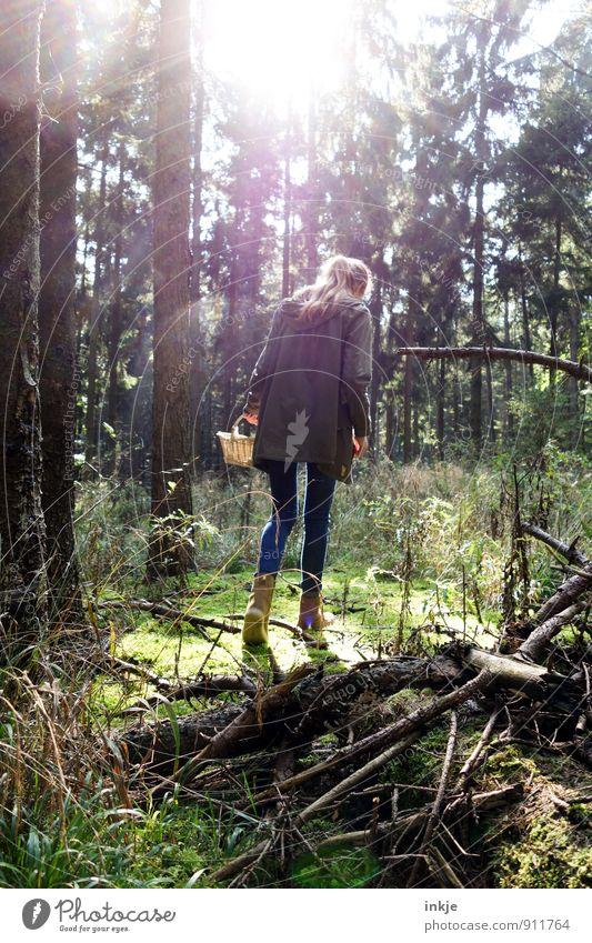 in die Pilze gehen Lifestyle Mädchen Junge Frau Jugendliche Leben Rücken 1 Mensch 18-30 Jahre Erwachsene Umwelt Natur Landschaft Sonnenlicht Sommer Herbst