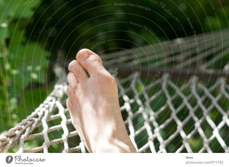abhängen Mensch Natur Mann Sommer Sonne Erholung Umwelt Erwachsene Leben Fuß liegen Freizeit & Hobby Zufriedenheit Schönes Wetter Pause Wellness