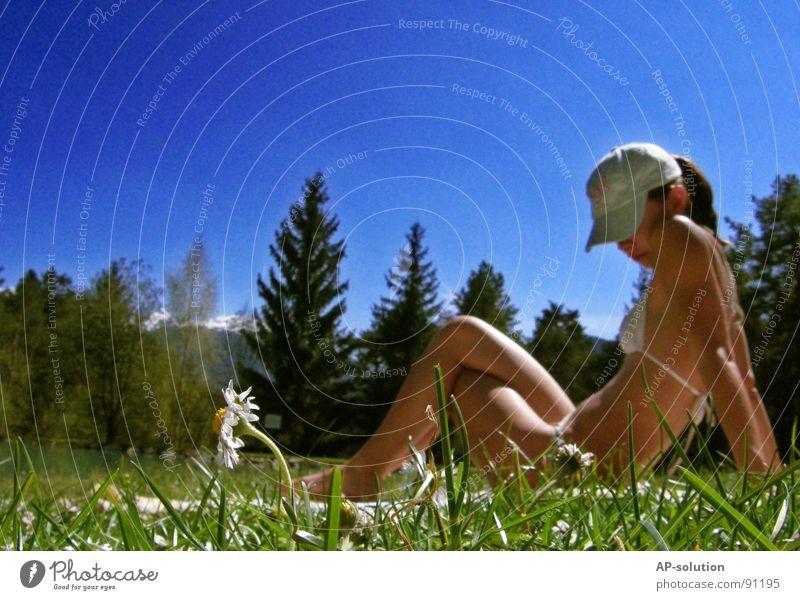 Gänseblümchen Frau Mensch Natur Jugendliche Himmel Baum Sonne Blume blau Sommer Freude Wald Wiese feminin Gefühle Stil