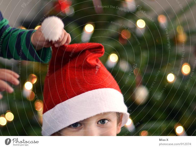 Schnapp Mensch Kind Weihnachten & Advent Hand Freude Junge Spielen lachen Kopf Freundschaft Familie & Verwandtschaft Kindheit Fröhlichkeit Mütze Weihnachtsbaum