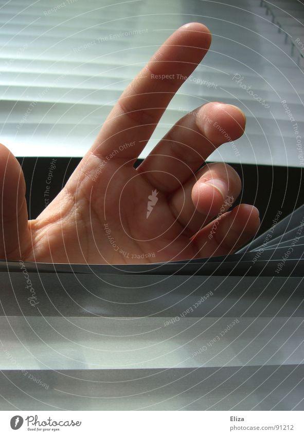 Lebenszeichen anonym unerkannt Fenster Rollo festhalten Hand Finger Fingernagel Einsamkeit Entführung Schüchternheit grauenvoll dunkel Angst gefangen