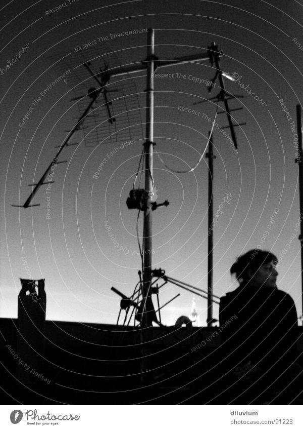 auf den dächern belins Himmel weiß schwarz dunkel hell Dach Antenne