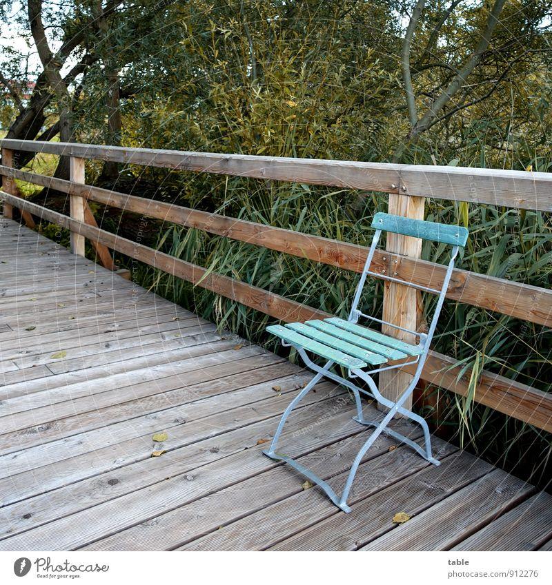 Stuhl auf Steg an Wasser Ferien & Urlaub & Reisen Ausflug Umwelt Natur Landschaft Pflanze Frühling Sommer Herbst Schönes Wetter Baum Sträucher Seeufer