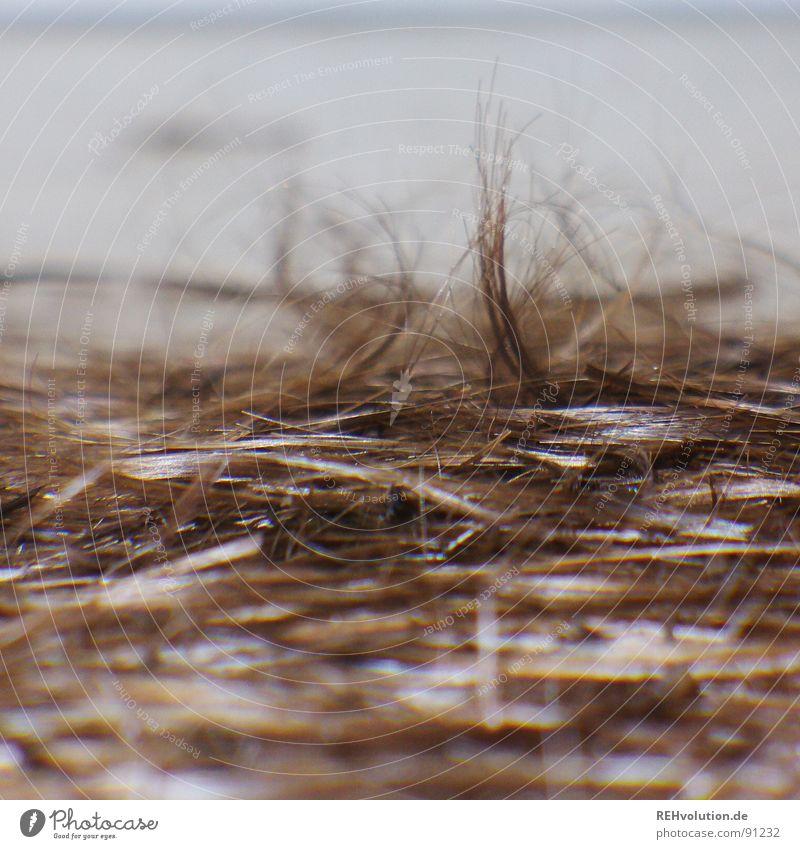 haare ab! Kurzhaarschnitt geschnitten Kehren Friseursalon Haare & Frisuren Haarschnitt Sommerfrisur Haarsträhne Haufen mehrere abschneiden Stil schön Bodenbelag