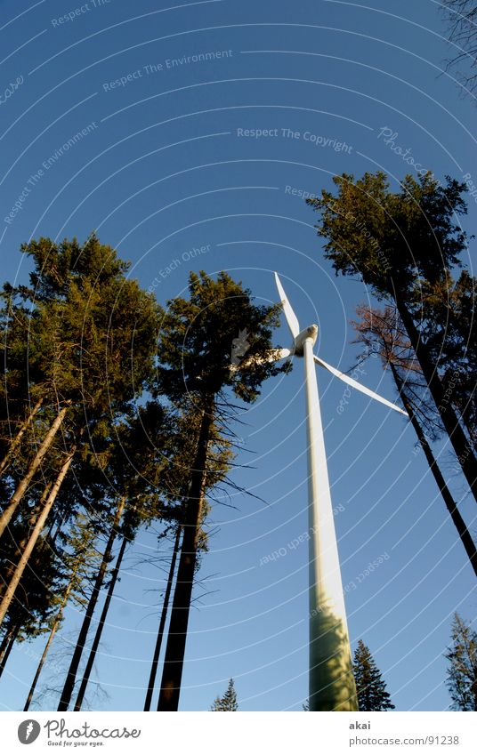 Windkraft am Roßkopf 4 Himmel Nadelbaum Wald himmelblau Geometrie Laubbaum Perspektive Nadelwald Waldwiese Paradies Waldlichtung Windkraftanlage Elektrizität
