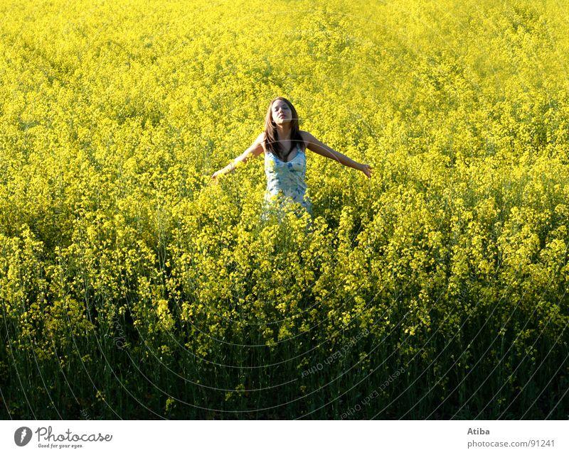 sonnenanbeter Raps gelb Feld Landwirtschaft feminin Kleid Gebet Sommer Frühling Erdöl genießen Farbe