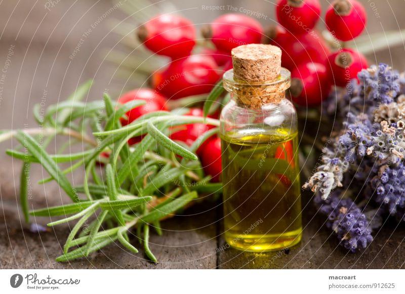Pflanzenöl Öl Rosmarin kräuteröl Hagebutten Hundsrose Beeren Holztisch Glasflasche Lavendel Blume getrocknet Essen Foodfotografie Geschmackssinn Duft grün